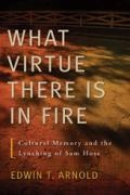 What Virtue There Is in Fire book cover
